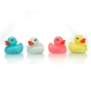 Glow in the dark ducks (Display of 24) - Click for more info