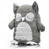 Mother Owl - animal hug - Click for more info
